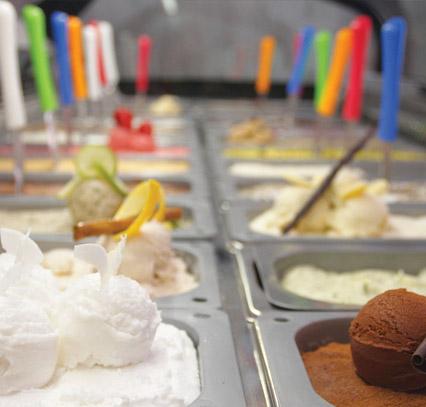 Pyreneum. Empresa de gelats naturals