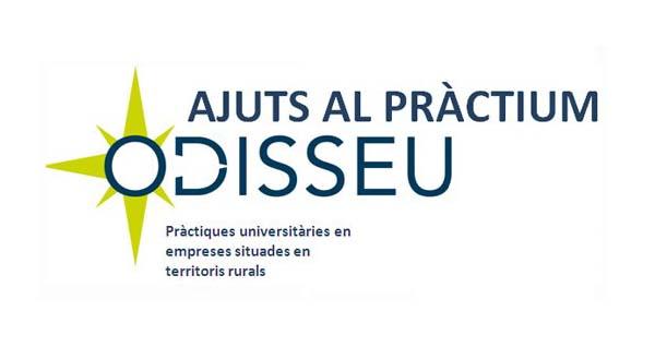 Pràcticum Odisseu també a l'Alt Urgell i la Cerdanya
