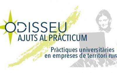 Ajuts al Pràcticum Odisseu 2019